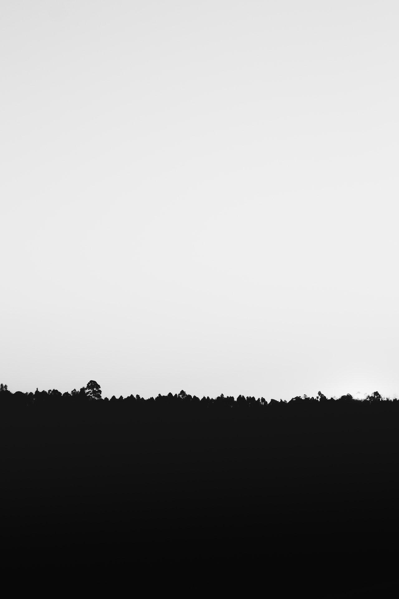 图说|黑白飘渺